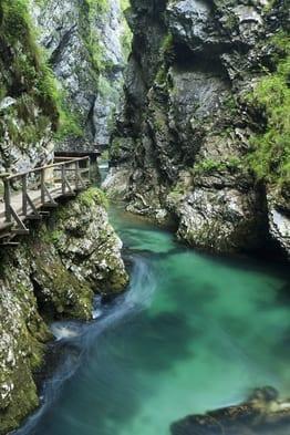 Turismo Bled Eslovenia 10